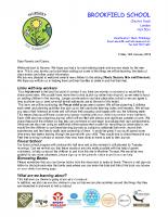 Curriculum letter Spring 2018 YN