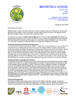 Curriculum letter summer 2018 YN