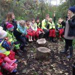 Forest school feedback