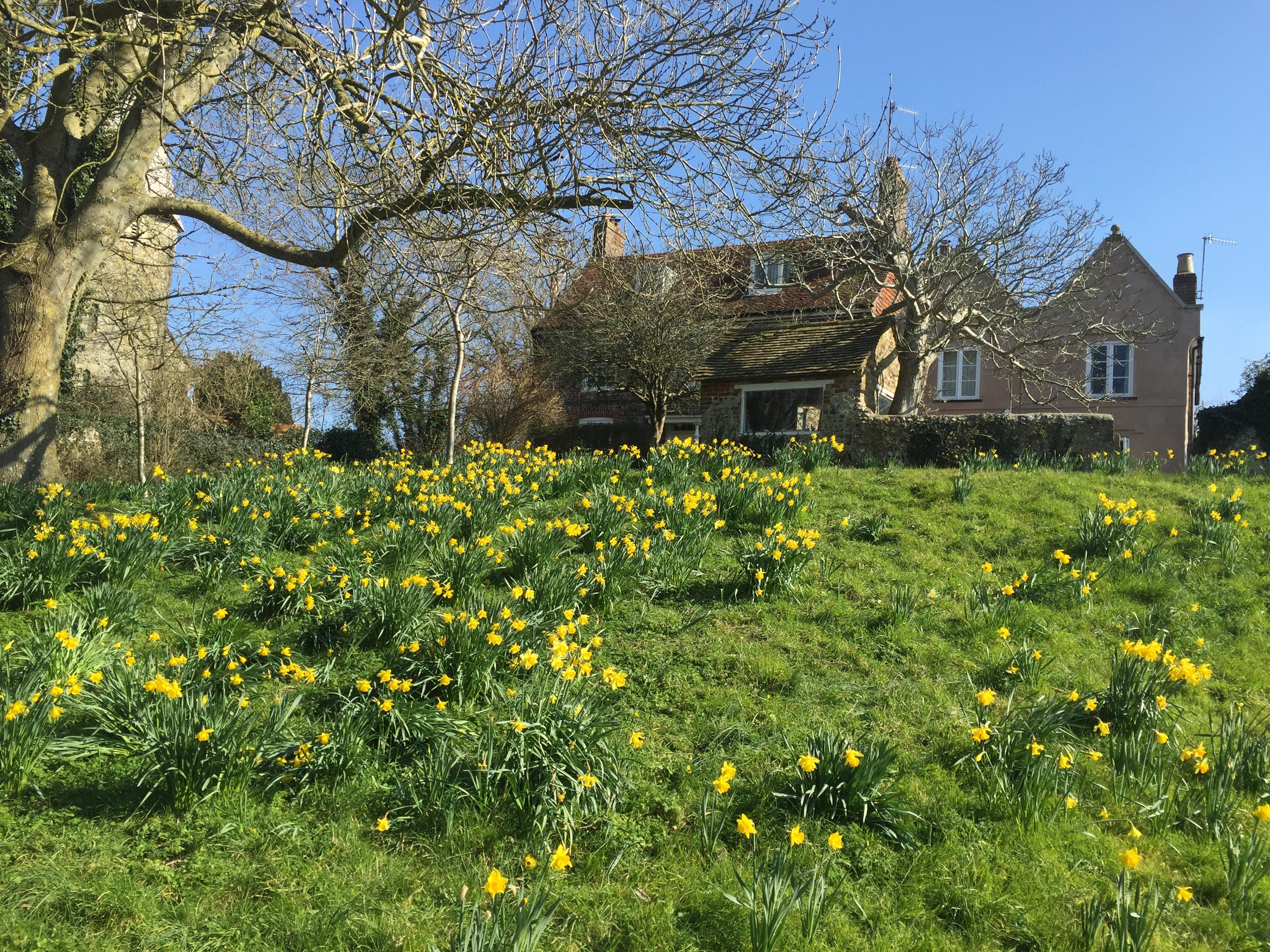 Weekend cottage near Lewes – sleeps 6